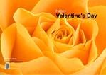 valentine-day-02