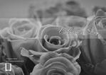 valentine-day-04